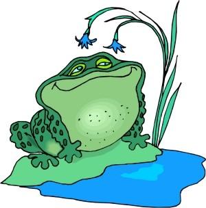 frogs_matter.jpg