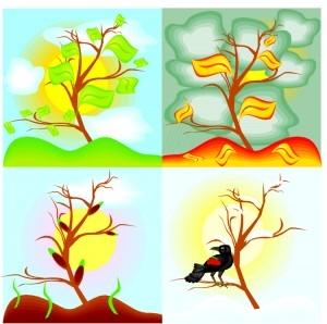 seasons_graphic.jpg
